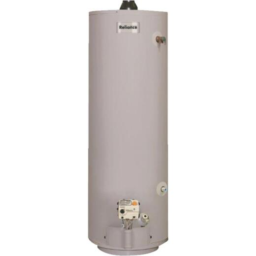 Reliance 30 Gal. Tall 6yr 30,000 BTU Mobile Home Direct Vent Natural Gas/Liquid Propane Water Heater
